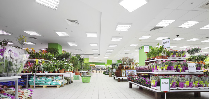 Retailers Curb Energy Use with Lighting Retrofits